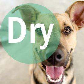 DryStrap