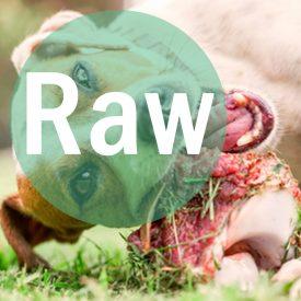 Raw strap2